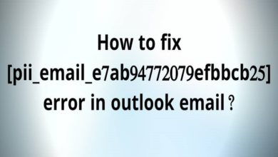 5 Methods to Fix [pii_email_e7ab94772079efbbcb25] error